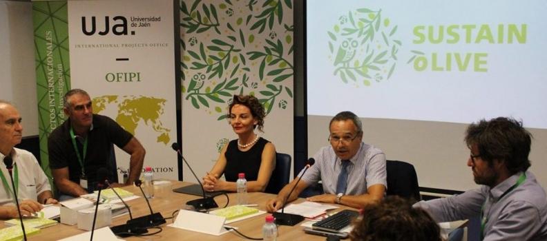 La UJA protagoniza los primeros pasos del proyecto europeo «Sustainolive», que permitirá la mejora de la sostenibilidad del olivar