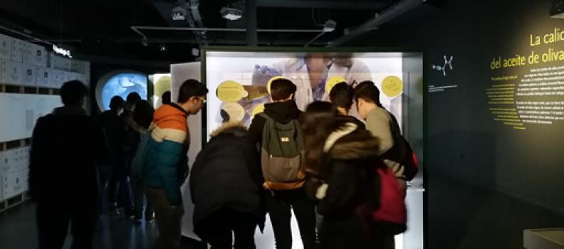 Cerca de un millar de escolares de la provincia de Jaén visita el Museo Terra Oleum durante el primer trimestre del año