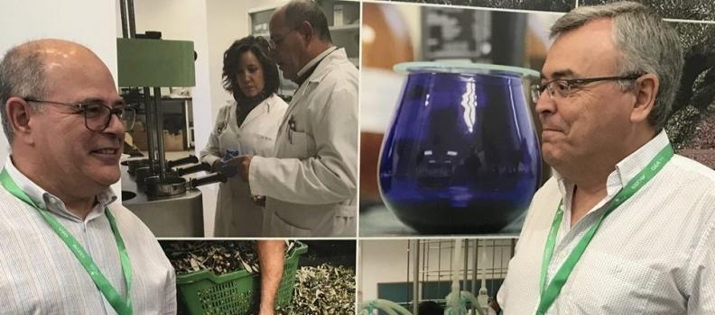La UJA presenta un proyecto para la aplicación de ecuaciones matemáticas para predecir la calidad del aceite de oliva