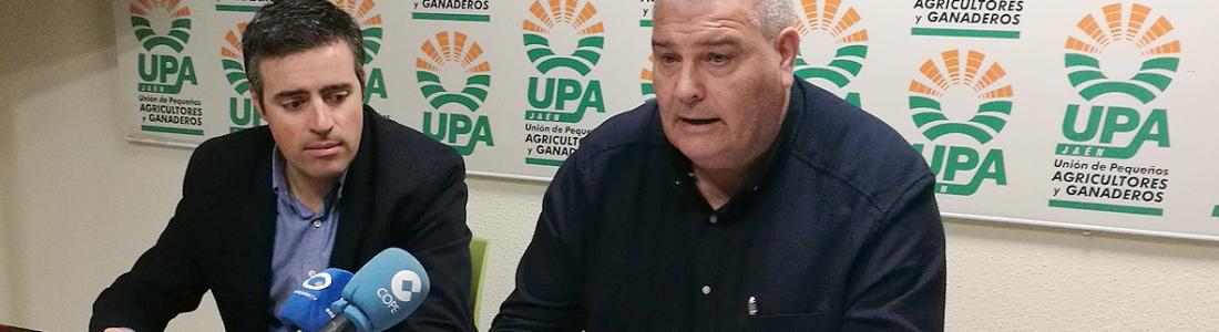 UPA-Jaén y UPA-Huelva coordinarán una bolsa de trabajadores para concatenar las campañas de la aceituna y de los frutos rojos
