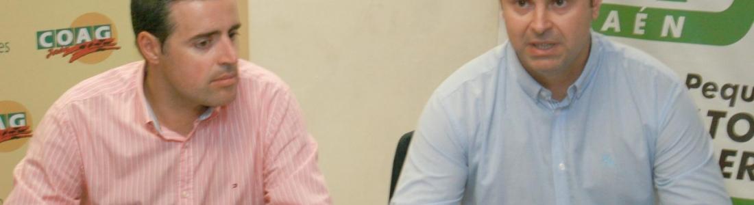 COAG y UPA reclaman que se amplíe el plazo para comunicar los jornales de la campaña de la aceituna