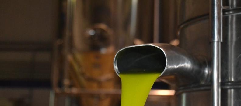Cooperativas Agro-alimentarias de Andalucía valora la comercialización de  307.000 toneladas de aceite de oliva en el primer trimestre de la campaña