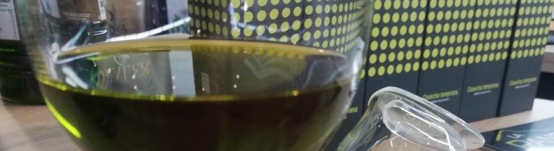 UPA destaca el récord de comercialización de aceite de oliva en junio para denunciar «la injusta situación de los precios de ruina en origen»