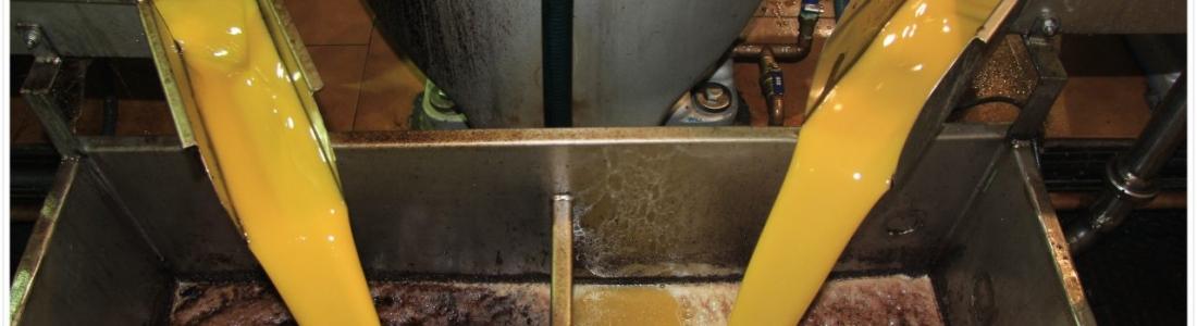 Las empresas de Anierac pusieron en el mercado en febrero 28 millones de litros de aceite de oliva