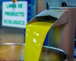 España ha comercializado hasta agosto 1.484.500 toneladas de aceite de oliva