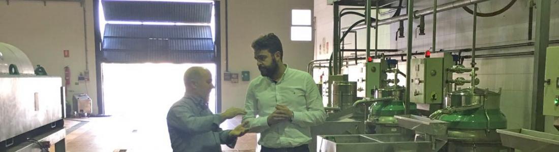La Cooperativa Bedmarense elabora su primer aceite de cosecha temprana