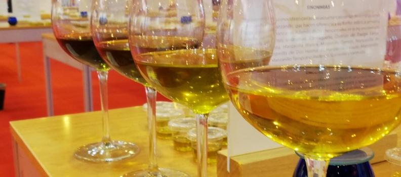 Récord de salidas al mercado de aceite de oliva para un mes de junio