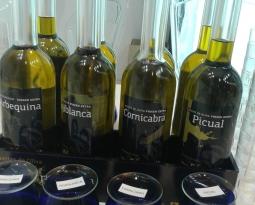ANIERAC puso en el mercado en abril 25 millones de litros de aceite de oliva