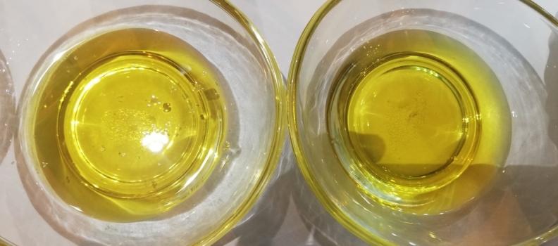 Las empresas de Anierac comercializaron en agosto casi 25 millones de litros de aceites de oliva