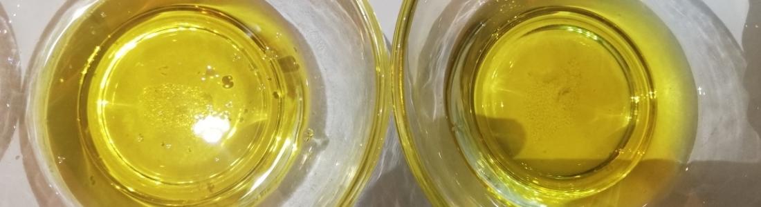 El aceite de oliva sigue en la órbita de los dos euros en origen y con un enlace que superará las 700.000 toneladas