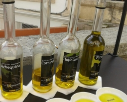 La paulatina y continuada escalada de precios del aceite de oliva en el mercado de origen supera ya los tres euros el kilo para el virgen extra y el lampante roza los 2,70