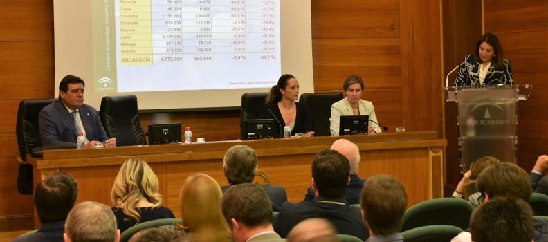 UPA Jaén considera que el olivar tradicional afronta una complicada campaña por la reducción de cosecha y por los bajos precios en origen