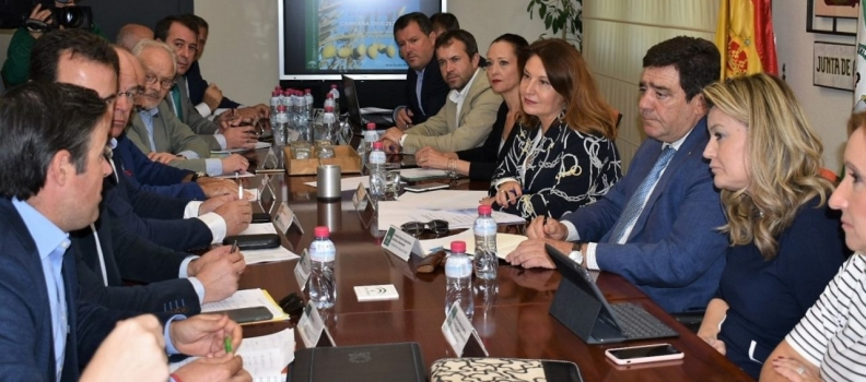 COAG Andalucía pide a Bruselas que ponga medidas para que los países productores realicen un aforo de aceite real y transparente