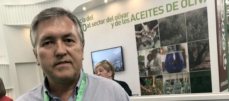 La UJA da a conocer las líneas de investigación que desarrolla relativas al aprovechamiento de la biomasa del olivar a través de biorrefinerías