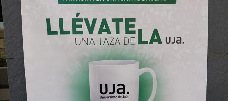 Más de 200 personas han participado ya en la cata de la Cátedra Caja Rural de Jaén de la UJA que estudiará  la percepción que tiene el consumidor sobre el AOVE