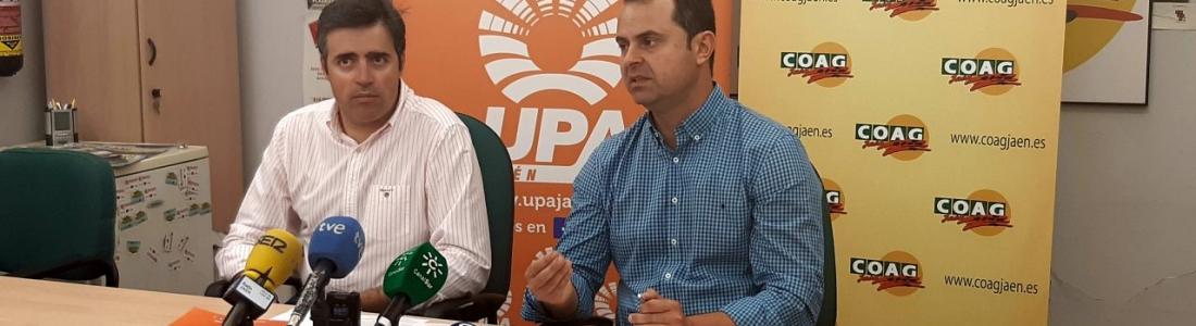 COAG y UPA convocan una concentración el 29 de mayo para protestar por los bajos precios en origen del aceite de oliva