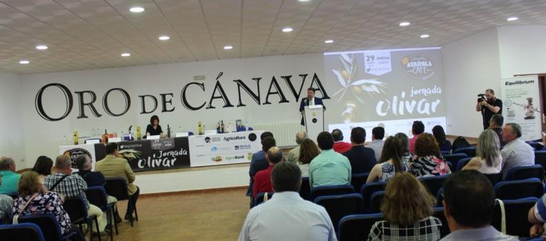 Andalucía exportó 89.000 litros de aceite de oliva cada hora en 2017 y facturó 3.400 millones