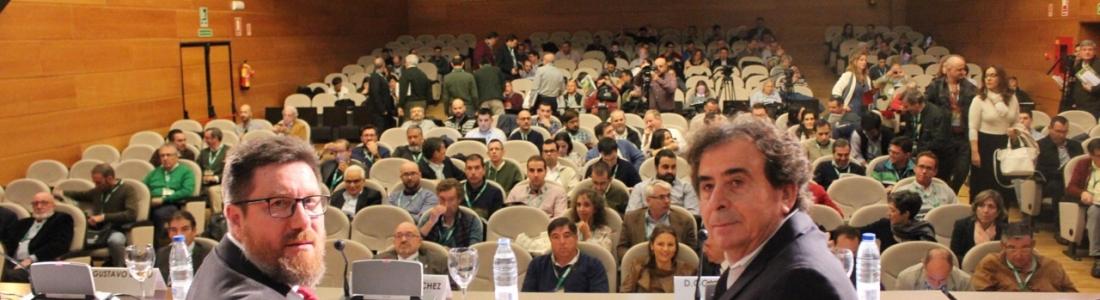 La Junta certifica la ausencia de la «xylella fastidiosa» con la realización de más de 6.000 análisis