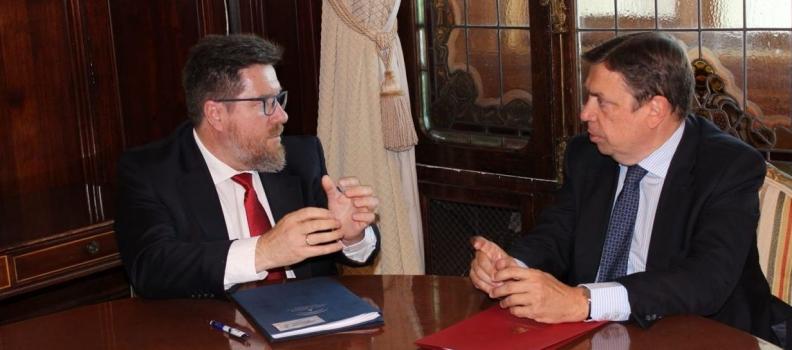 """Junta y Ministerio piden """"el máximo esfuerzo diplomático"""" a la UE para revertir los aranceles de EEUU a la aceituna negra"""