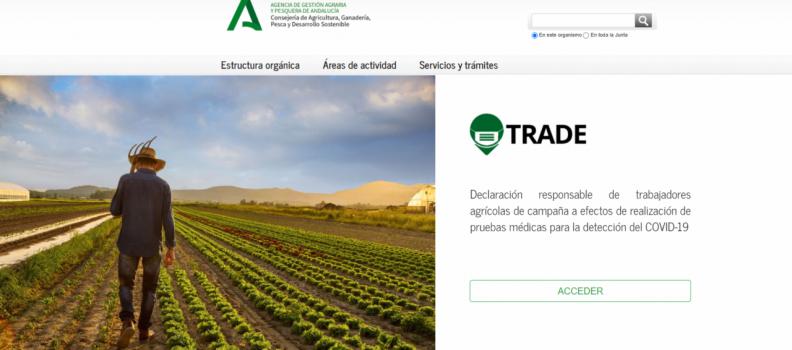 """La delegada de Agricultura pide a los agricultores que utilicen el sistema """"Trade"""" para dar de alta a temporeros en la aceituna y planificar los test"""