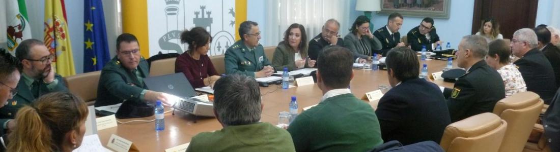 MÁS DE UN MILLAR DE GUARDIAS CIVILES CONTROLARÁ LA CAMPAÑA DE LA RECOGIDA DE ACEITUNA EN JAÉN