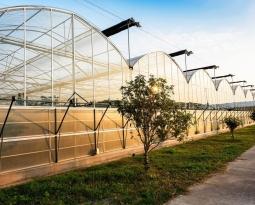 Agricultura autoriza el pago de 5 millones a la modernización de explotaciones