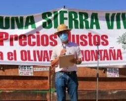 Una caravana de vehículos exige en la Sierra de Segura la defensa del olivar en pendiente y precios justos para el aceite