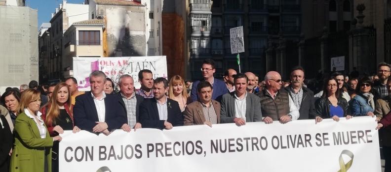 Los olivareros de Jaén inician la tercera ronda de movilizaciones por la crisis de precios del aceite con concentraciones y cortes de carretera