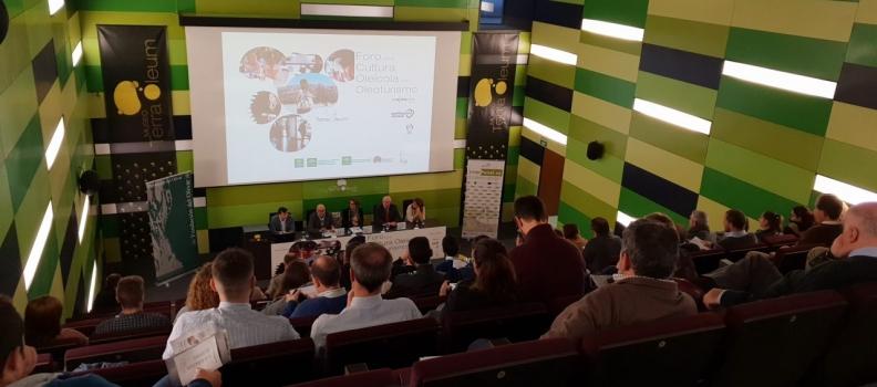 Profesionales del sector del oleoturismo se reúnen en el Museo Terra Oleum en el I Foro por la Cultura Oleícola de Andalucía