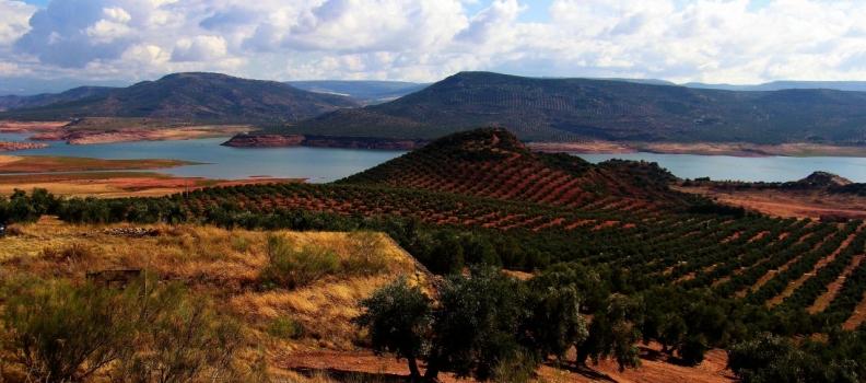 Crespo resalta que la Consejería convocará en 2020 ayudas para el sector agrario que rondarán los 200 millones de euros