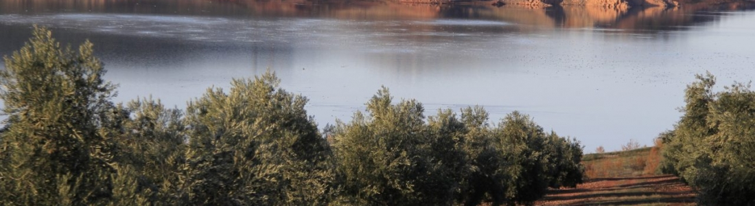 La CHG en Jaén facilitará los riegos extraordinarios de la cuenca en la provincia de Jaén