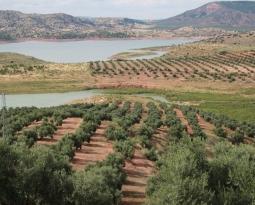 La reserva hídrica española se encuentra al 56,4 por ciento de su capacidad