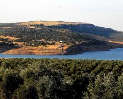 UPA Andalucía y ASARE valoran la ampliación del riego aprobada por la CHG, pero insisten en la necesidad de más infraestructuras