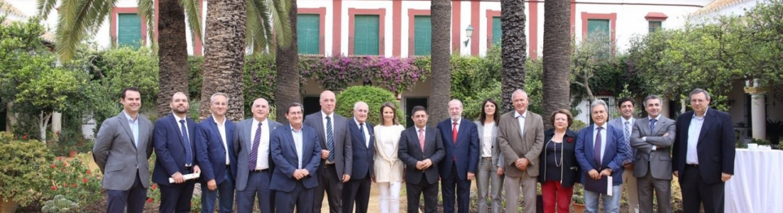 Varias diputaciones y universidades públicas se adhieren a la candidatura de Los Paisajes del Olivar en Andalucía
