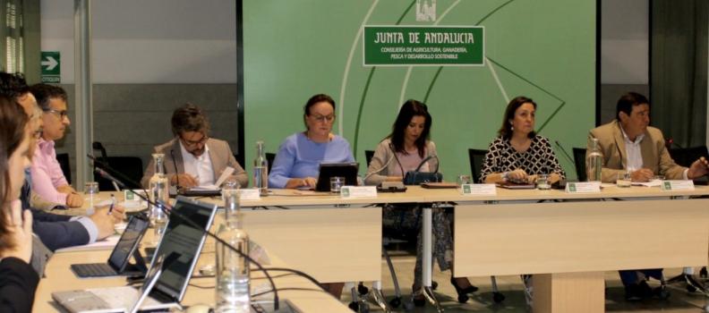 Constituido el Comité Director del Plan Estratégico para la Mejora de la Competitividad del sector andaluz