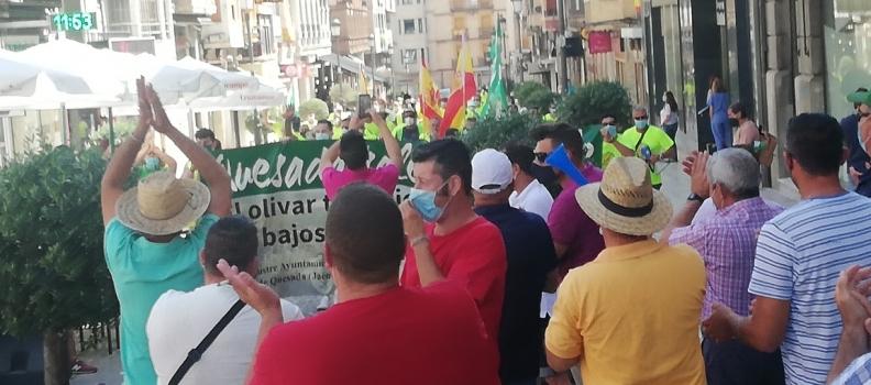 Olivareros protestan en Jaén por los bajos precios y en defensa del olivar tradicional