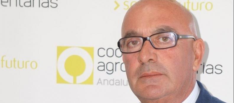 El sector agroalimentario sufre el mayor ataque de la historia ante la inacción de nuestros políticos (*tribuna de opinión de Juan Rafael Leal Rubio, presidente de Cooperativas Agro-alimentarias de Andalucía)