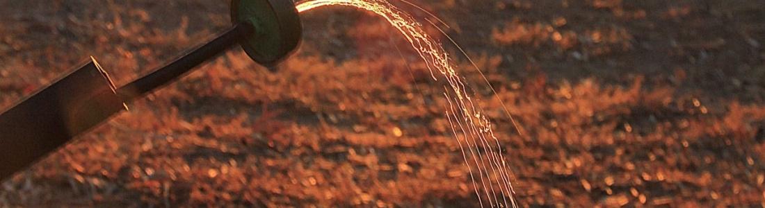 ASARE y UPA presentan solicitudes de riego extraordinario que benefician a cerca de 10.000 hectáreas de olivar