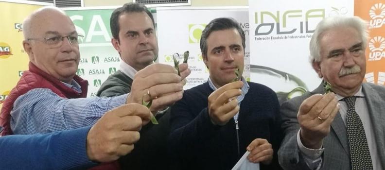 El sector productor se declara en «una situación de movilización permanente» hasta que mejore la situación de los precios en origen del aceite de oliva