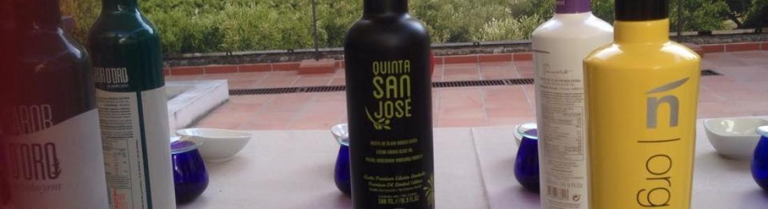 Un total de 115 aceites de oliva participan en el maratón AOVE del Centro de Interpretación Olivar y Aceite