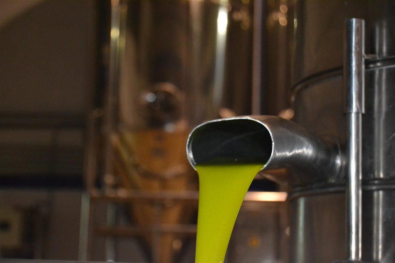 El aceite de oliva virgen concentró el mayor valor de las exportaciones agroalimentarias entre enero y septiembre en Andalucía
