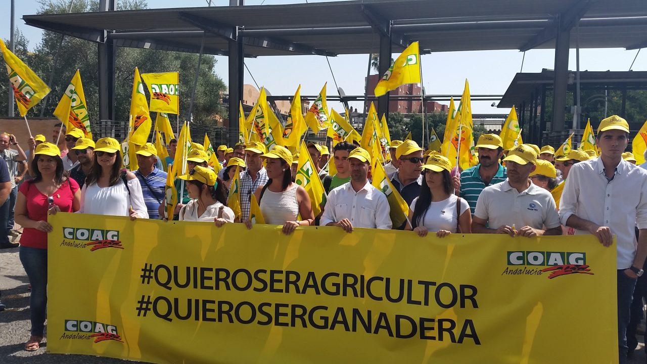 COAG Andalucía afirma que la Consejería de Agricultura abandona a los emprendedores del sector agrario