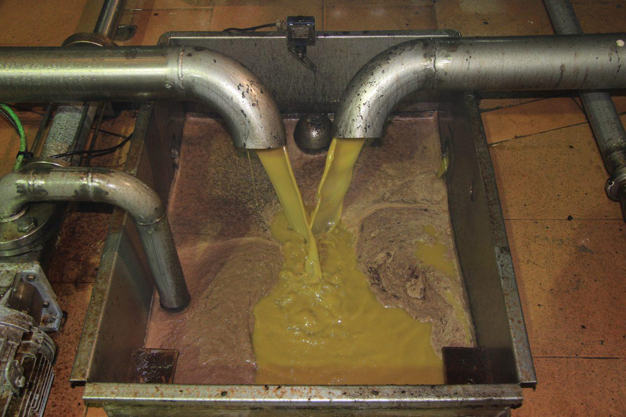 La comercialización de aceite de oliva se acercó a las 300.000 toneladas en los tres primeros de esta campaña