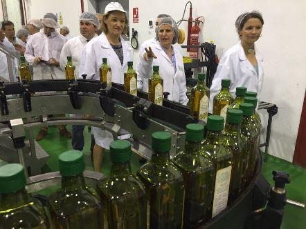 La Junta y el sector acordarán la propuesta de ayudas asociadas al olivar en pendiente que presentarán ante el Ministerio