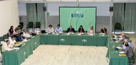 La Junta solicita una ayuda asociada al olivar en pendiente