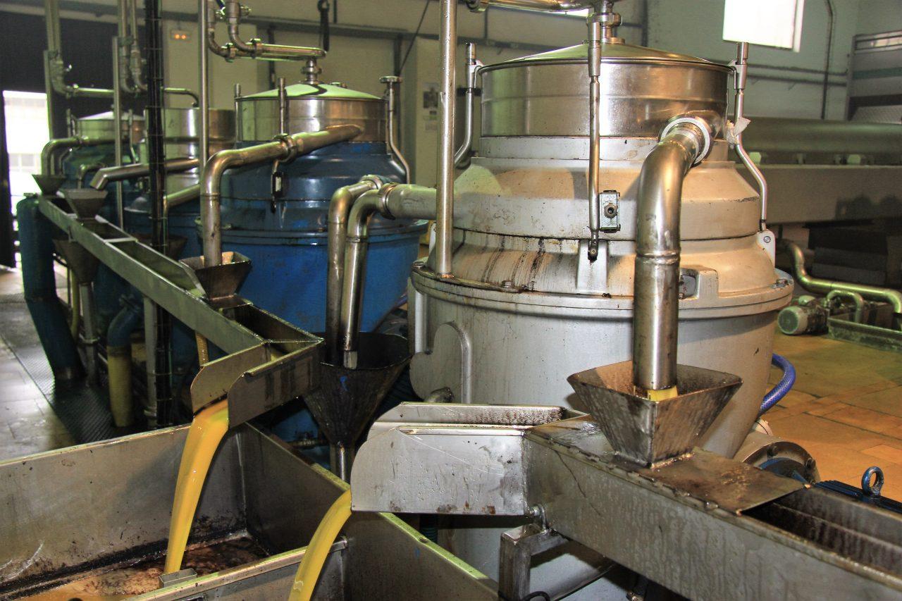 Las empresas de Anierac vendieron más de 28 millones de litros de aceite de oliva en mayo