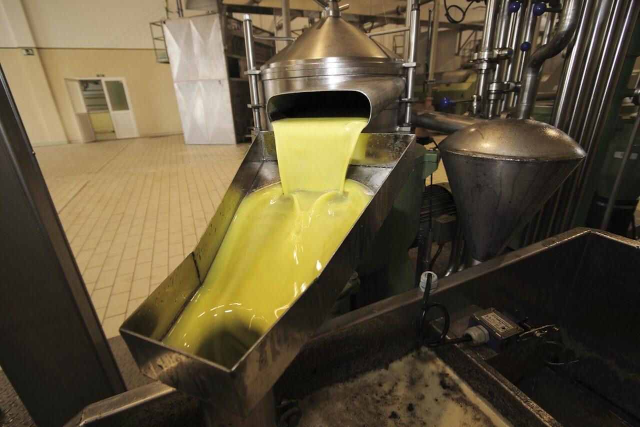 La DO Sierra de Cazorla estima una producción de aceite de oliva en esta campaña de entre 40 y 45 millones de kilos