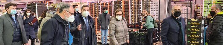 Planas: La nueva ley de la cadena alimentaria fomenta la creación de valor