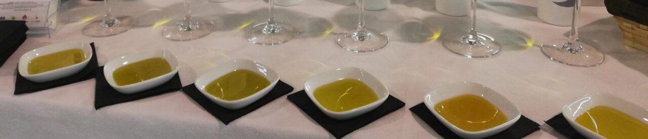 El Ministerio de Agricultura constata un elevado ritmo de ventas y buenos precios en el ecuador de la campaña del aceite de oliva