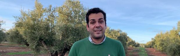 "Requena celebra la candidatura de ""nuestro paisaje del olivar"" a Patrimonio Mundial"